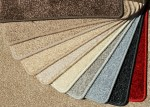 Florida Carpet